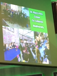 Green Schools Awards